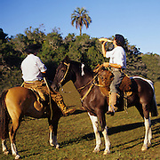 South America, Uruguay, Florida, Authentic gauchos on a working ranch.