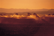 A farmer gets up at sunrise to adjust the sprinklers watering his crops
