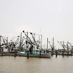 Shrimp boats sit dockside at the Venice Marina in Venice, Louisiana, U.S., on Saturday, May 1, 2010. Wildlife and the seafood industry in south east Louisiana are threatened by the oil spill created due to the BP Plc Deepwater Horizon drilling rig that exploded and collapsed in the Gulf of Mexico. Photographer: Derick E. Hingle.