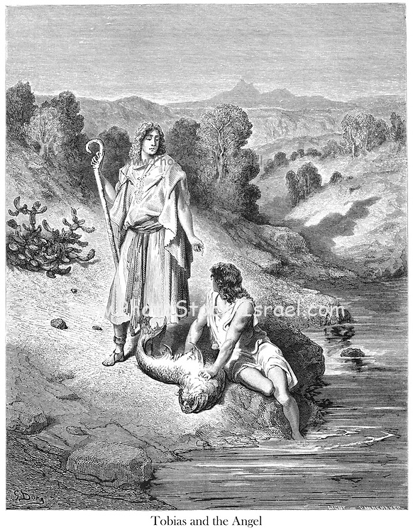 Tobias and the Angel [Tobit 6:4] From the book 'Bible Gallery' Illustrated by Gustave Dore with Memoir of Dor? and Descriptive Letter-press by Talbot W. Chambers D.D. Published by Cassell & Company Limited in London and simultaneously by Mame in Tours, France in 1866. Tobias and the Angel The Book of Tobit is a book of scripture that is part of the Catholic and Orthodox biblical canons. It was recognized as canonical by the Council of Hippo (in 393), the Councils of Carthage of 397 and 417, and the Council of Florence (in 1442), and confirmed in the Counter-Reformation by the Council of Trent (1546). It is not found in Protestant or Jewish biblical canons.