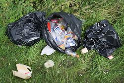 Rubbish strewn around ripped black plastic bin bags,