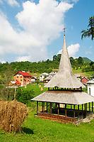 Roumanie,region de Maramures, Carpates, region des églises en bois.  // Romania, Maramures, Carpates, region of wooden village.