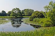 223 Parsonage Pond Ln, Sagaponack, Long Island, New York
