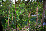 Mossman River in the Daintree Rainforest, Far North Queensland, Australia