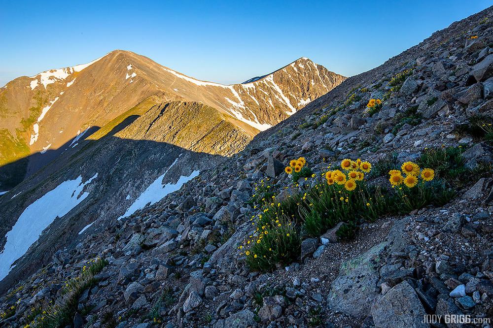 Gray Peak 14,270ft and Torrey Peak 14,267ft
