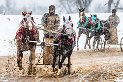 Snow and mud flying at the Cutter Races in Afton Wyoming.  I love shooting in driving snowstorms.