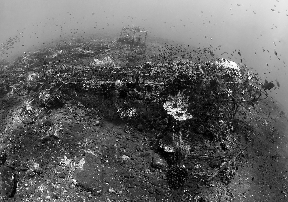 INDONESIA. Tulamben, Bali. July 8th, 2013. The frame of a small twin prop aircraft sits on the volcanic slope and acts as an artificial reef.