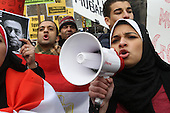 Egyptian-Americans Protest at U.N. in Solidarity with Egyptian Revolution