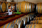 Patos de Minas_MG, Brasil...Cacharia que fabrica aguardente para exportacao em Patos de Minas, Minas Gerais...The cachaca production for exportation in Pato de Minas, Minas Gerais...Foto: LEO DRUMOND / NITRO