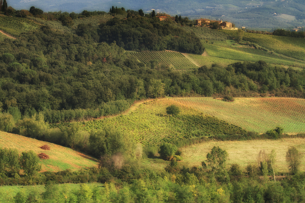 """Tuscan countryside<br /> <br /> Available sizes:<br /> 12"""" x 18"""" print <br /> 12"""" x 18"""" gallery wrap<br /> See Pricing page for more information."""