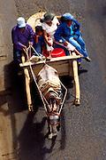 Nicaragua / San Juan Del Sur / Family / Horse Cart / Transportation