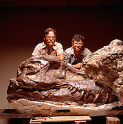 """Sue,"" the largest and most complete tyrannosaur ever found, with Pete (left) and brother, Neal Larson.  Sue was named after her discoverer, Sue Hendrickson as per the policy of their company, the Black Hills Institute."