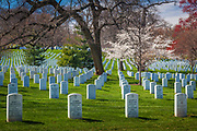 Arlington National Cemetery in Arlington County, Virginia, is a military cemetery in the United States of America, established during the American Civil War on the grounds of Arlington House, formerly the estate of the family of Confederate general Robert E. Lee's wife Mary Anna (Custis) Lee, a great grand-daughter of Martha Washington. The cemetery is situated directly across the Potomac River from the Lincoln Memorial in Washington, D.C.