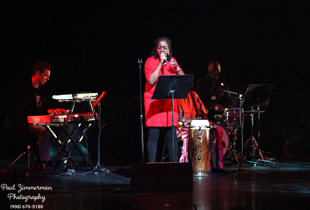 NEW YORK, NY - DECEMBER 30:  (C) Musician Carla Cook of the band Tailgater's Tails performs at the 5th Annual Regeneration Night Kwanzaa Celebration at The Apollo Theater on December 30, 2011 in New York City.  (Photo by Paul Zimmerman/WireImage)