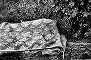 DE LA SERIE D. Trayecto: Plaza Bvar. Artigas esq. Bvar. España y callejones aledaños-Parque Rodó-Bvar. Artigas por debajo de Sarmiento hasta Ibiray-Estigarribia. Montevideo, 24/04/2013.<br /> Foto: Ricardo Antunez<br /> URUGUAY<br /> 2013