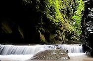 Las Cuevas de los Tayos, a cavern in the province of Napo, Ecuador, where endangered birds make their nests.