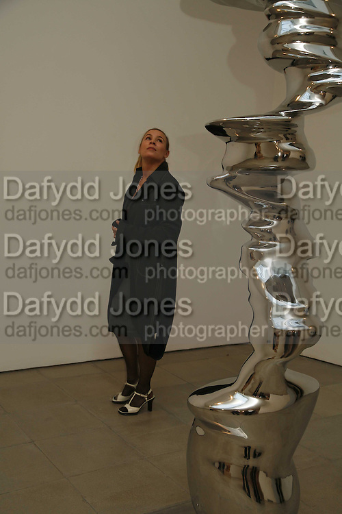 Phyllis Kiehl, Sculptures. Tony Cragg. Lisson Gallery. Bell st. Collectors opening. 15 May 2006.  ONE TIME USE ONLY - DO NOT ARCHIVE  © Copyright Photograph by Dafydd Jones 66 Stockwell Park Rd. London SW9 0DA Tel 020 7733 0108 www.dafjones.com