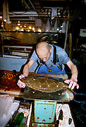 A trader weighs a fish at  Tsukiji Wholesale fish market n Tokyo, Japan. September 14th 2005