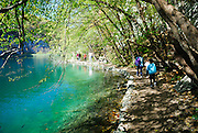 "Group of people walking along path beside lake, fish visible in water ""following"" walkers. Plitvice National Park, Croatia"