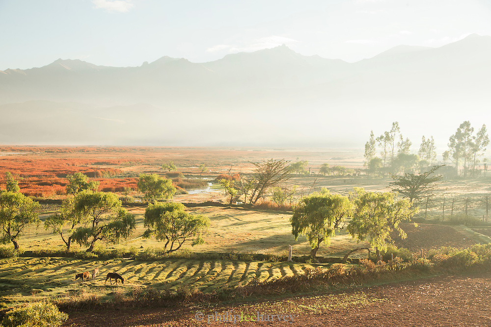 View over agricultural land in the Huarcarpay Valley, Sacred Valley, Peru, South America