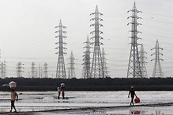 May 3, 2019 - Mumbai, India - Labourers carry baskets containing salt near electricity pylons at a salt pan in Mumbai, India on 03 May 2019. (Credit Image: © Himanshu Bhatt/NurPhoto via ZUMA Press)
