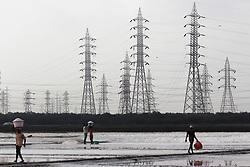 May 3, 2019 - Mumbai, India - Labourers carry baskets containing salt near electricity pylons at a salt pan in Mumbai, India on 03 May 2019. (Credit Image: © Himanshu Bhatt/NurPhoto via ZUMA Press)