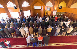 """Finsbury Park Mosque, London, February 7th 2016. Local residents are afforded the opportunity of watching Muslim men at prayer as part of a Visit My Mosque initiative by the Muslim Council of Britain to show non-Muslims """"how Muslims connect to God, connect to communities and to neighbours around them"""".<br /> . ///FOR LICENCING CONTACT: paul@pauldaveycreative.co.uk TEL:+44 (0) 7966 016 296 or +44 (0) 20 8969 6875. ©2015 Paul R Davey. All rights reserved."""