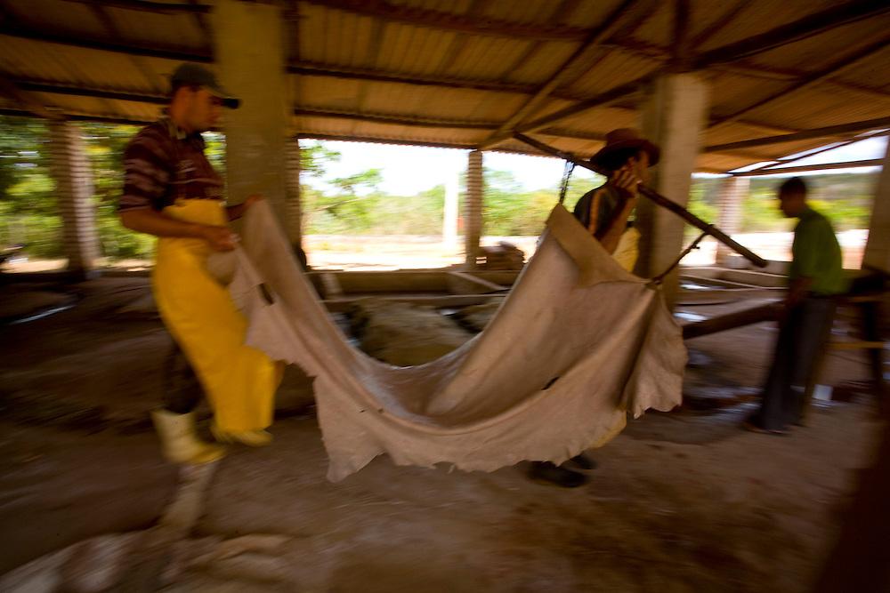 Serranopolis de Minas_MG, Brazil.<br /> <br /> Trabalhadores em um curtume em Serranopolis, Minas Gerais.<br /> <br /> Workers in a tannery in Serranopolis, Minas Gerais.<br /> <br /> Foto: LEO DRUMOND / NITRO