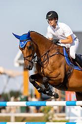 Bles Bart, NED, Kriskras DV<br /> Nederlands Kampioenschap Springen<br /> De Peelbergen - Kronenberg 2020<br /> © Hippo Foto - Dirk Caremans<br />  06/08/2020