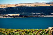 Columbia Gorge AVA