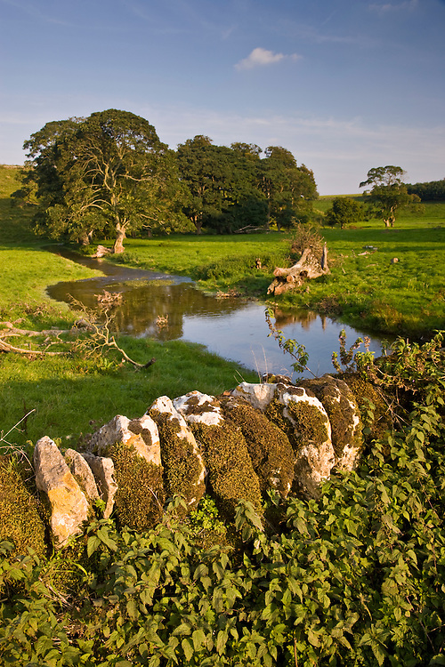 River scene with ancient woodland and dry stone wall covered in moss and lichen, The Cotswolds, Oxfordshire