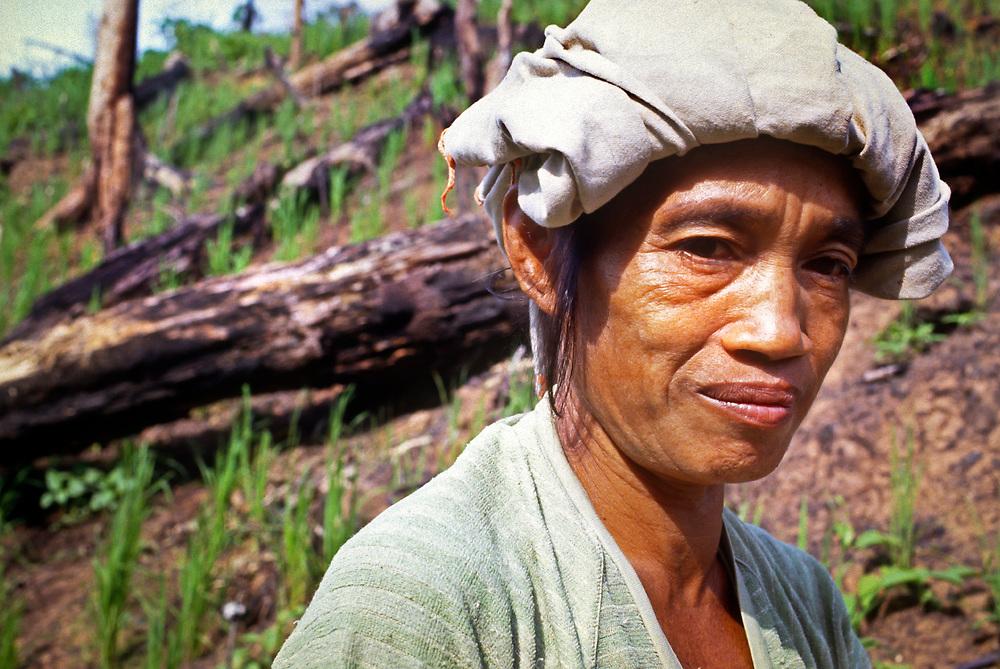 Portrait of a woman alone in paddy field, Borneo, Malaysia, SE Asia