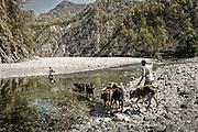 Upper Ramganga River.