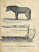 Dog, Sledge, whip and fish spear from the North Pole Copperplate engraving From the Encyclopaedia Londinensis or, Universal dictionary of arts, sciences, and literature; Volume XVII;  Edited by Wilkes, John. Published in London in 1820