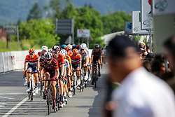 Peloton during 1st Stage of 26th Tour of Slovenia 2019 cycling race between Ljubljana and Rogaska Slatina (171 km), on June 19, 2019 in  Slovenia. Photo by Matic Klansek Velej / Sportida