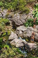 Tatev , Armenia - August 19, 2019 : people tourits bathing in ponds at Satanayi Kamurj Canyon of the vorotan river near Tatev  landmark of Syunik province Armenia eastern Europe