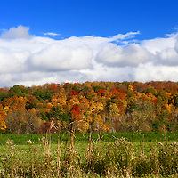 North America, USA, Vermont. Landscape of Fall colors in Vermont.