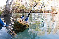Manatee tracking buoy with Do Not Touch, blue stripes and antenna. Horizontal orientation. Three Sisters Springs, Crystal River National Wildlife Refuge, Kings Bay, Crystal River, Citrus County, Florida USA.