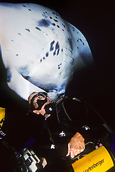 wildlife photographer James D. Watt and reef manta ray or coastal manta, Manta alfredi, Kona Coast, Big Island, Hawaii, USA, Pacific Ocean, MR - Model Released