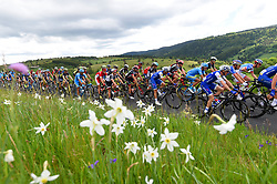 June 5, 2017 - Arlanc, France - ARLANC, FRANCE - JUNE 5 : Illustration picture of the peloton Landscape Bunch Postcard Post card Paysage Carte Postale landschap briefkaart  during stage 2 of the 69th edition of the Criterium du Dauphine Libere cycling race, a stage of 171 kms between Saint-Chamond and Arlanc on June 05, 2017 in Arlanc, France, 5/06/2017 (Credit Image: © Panoramic via ZUMA Press)