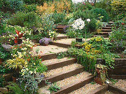 General view of the garden showing the use of railway sleepers to overcome an awkward sloping site