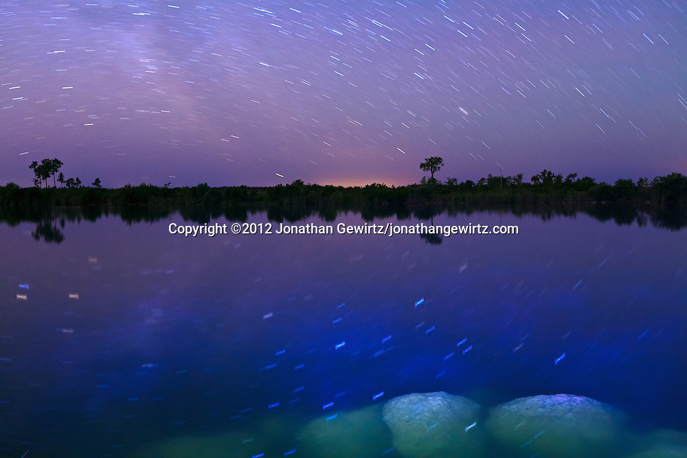 A time exposure reveals the movement of stars in the night sky over Sisal Pond in Everglades National Park, Florida. WATERMARKS WILL NOT APPEAR ON PRINTS OR LICENSED IMAGES.