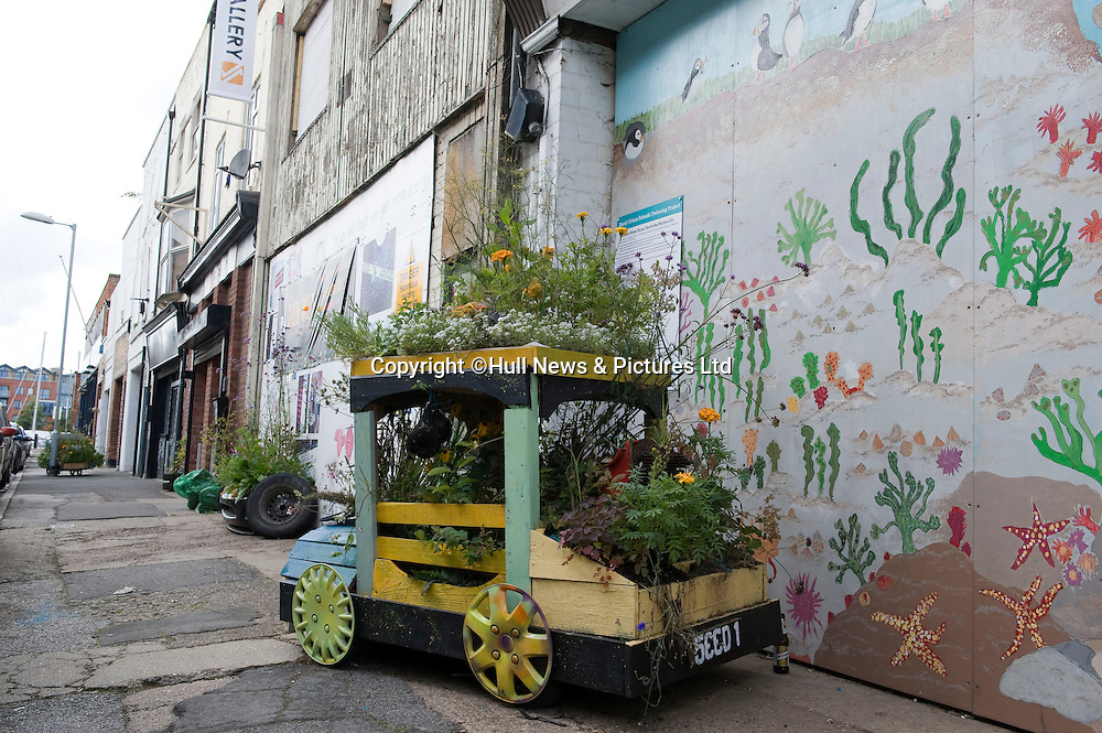 27 August 2014 Images of Kingston Upon Hull, East Yorkshire.<br /> Flowers in the Fruit Market area.<br /> Picture: Sean Spencer/Hull News & Pictures Ltd<br /> 01482 772651/07976 433960<br /> www.hullnews.co.uk   sean@hullnews.co.uk