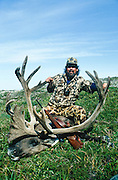 Caribou hunter with prize from the Mulchatna Herd north of Iliamna.