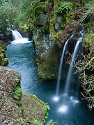 """Two pretty waterfalls along the North Umpqua River, on the half-mile trail to Toketee Falls, Oregon, USA. Published by the Portland Monthly, September 2008 (""""Weekend Getaways"""" article). Published in """"Light Travel: Photography on the Go"""" by Tom Dempsey 2009, 2010."""