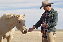 cowboy reaching his hand out to a wild horse in New Mexico