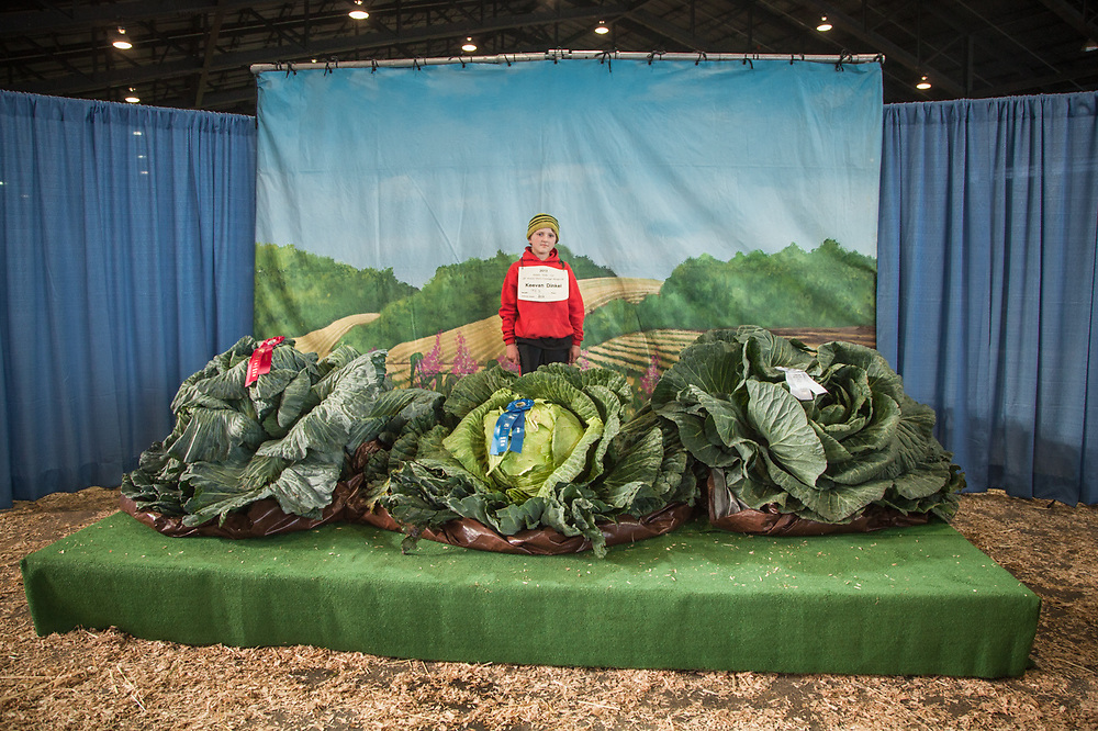 Keevan Dinkel and his first place 92.3 lb. cabbage at the annual Cabbage Weigh-off at The Alaska State Fair, Palmer, Alaska  zucfam@mtaonline.net