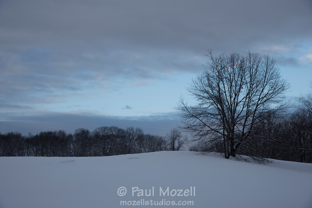 Rock Meadow Conservation Area in Belmont, MA at dusk