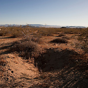 Joshua Tree National Park is one place where Native American artifacts are removed illegally and sold in violation of federal laws.