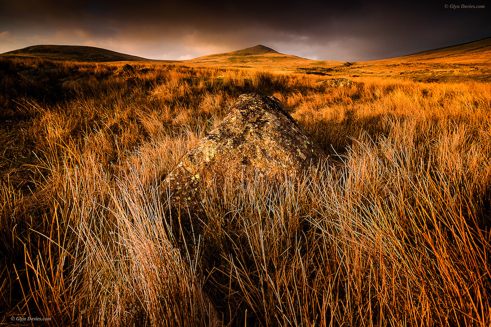 Evening sunlight over 'Gyrn' in the Carneddau mountains of Snowdonia, Wales.